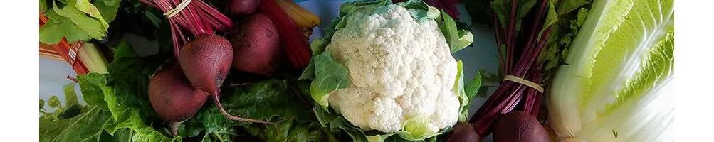 Coliflor | Comprar Semillas Ecológicas | Sementes Vivas