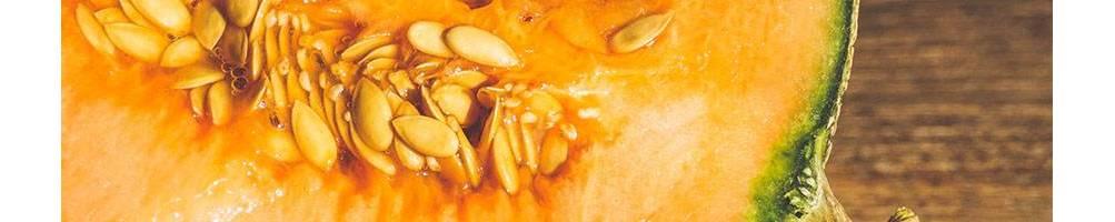 Melón |  Comprar Semillas Ecológicas | Semillas Vivas